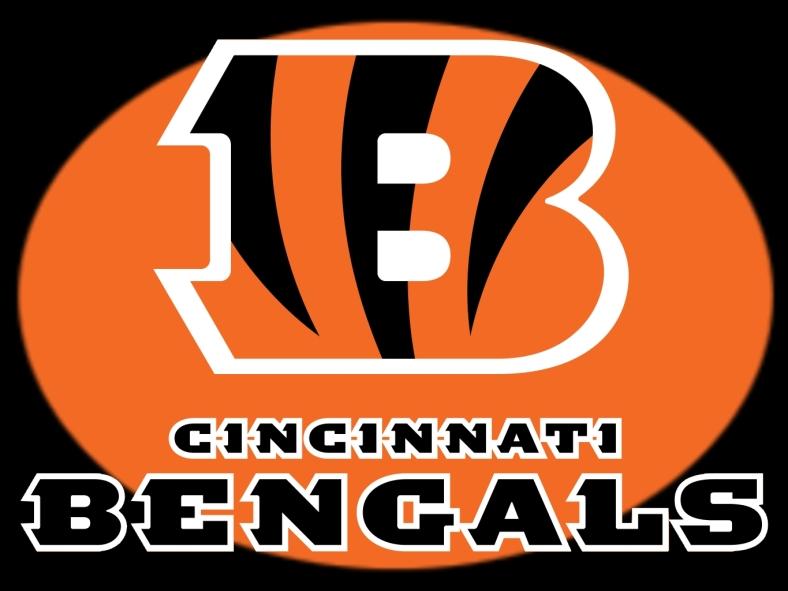 CincinnatiBengals3
